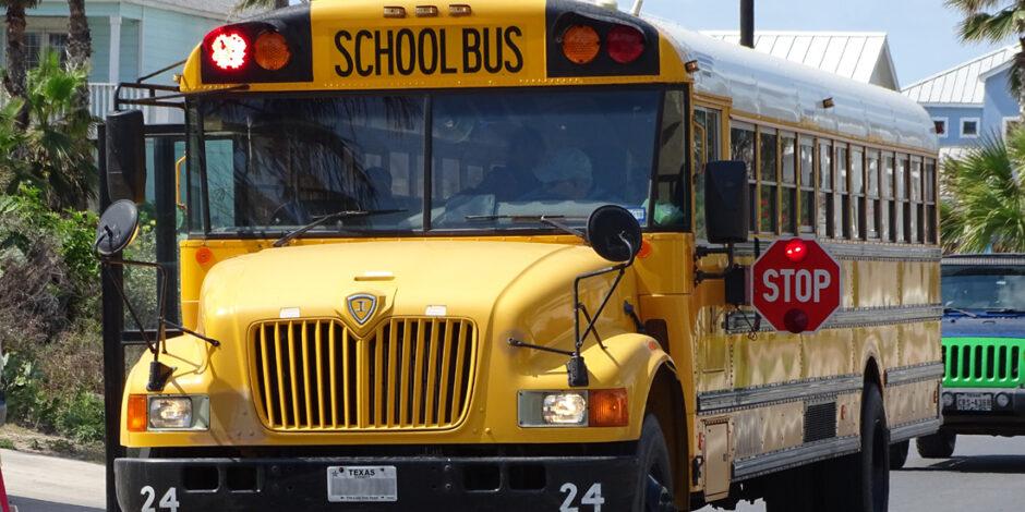 school bus - photo by xzelenz media