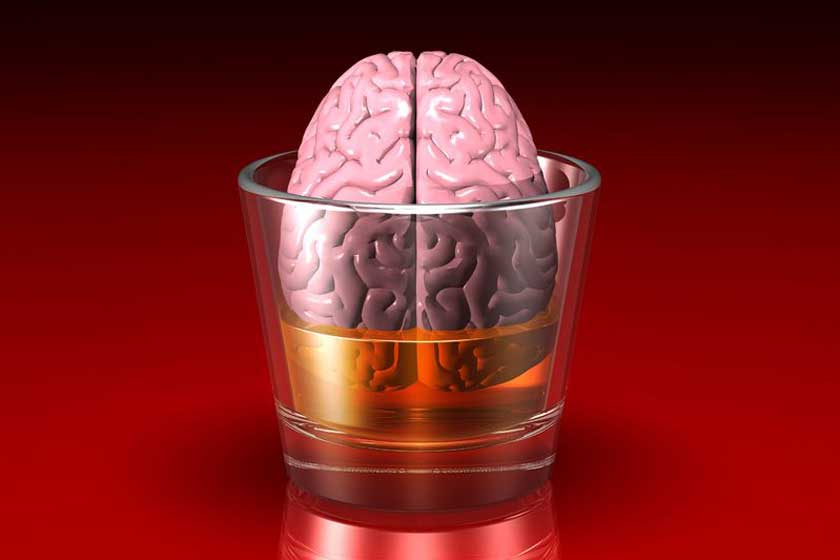 Brain in a glass - 123rf.com