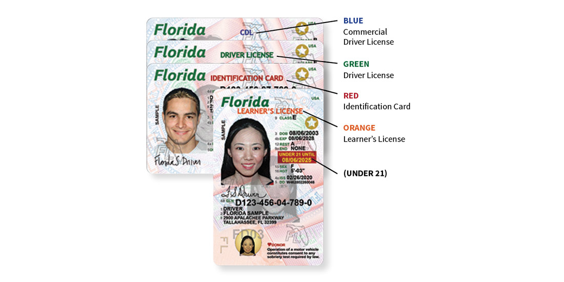 Florida Learners License
